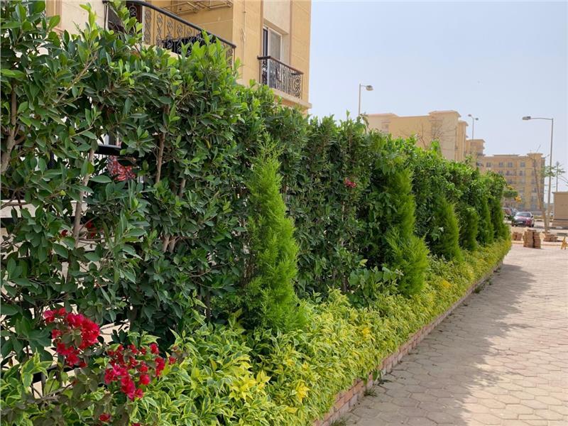 شقة فى مدينة الرحاب  179 م2 بحري و قبلي للبيع كاش كود 41110