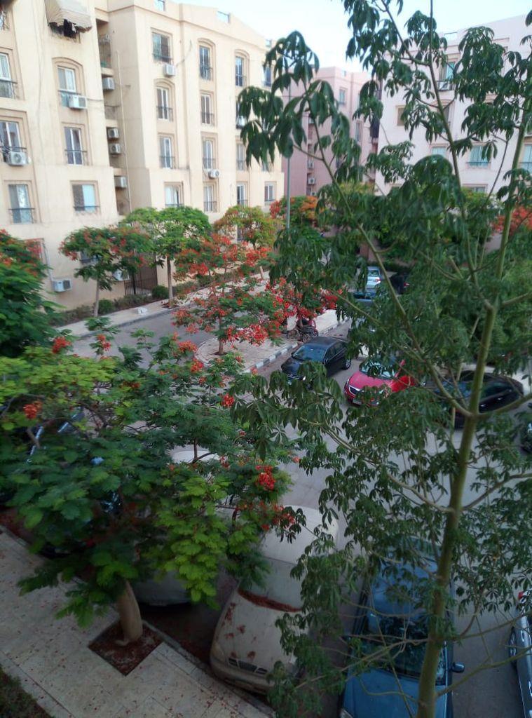شقة فى مدينة الرحاب  108 م2 بحرى للايجار مفروش كود 43302
